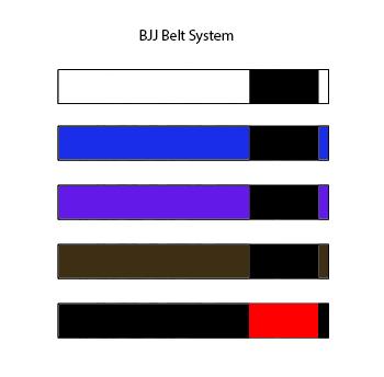 Adult BJJ Belts